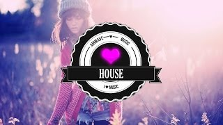 Best of House Mix 2013