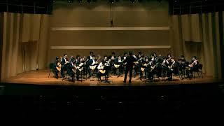 Antonio Vivaldi - Concerto for Lute and Strings, RV.93