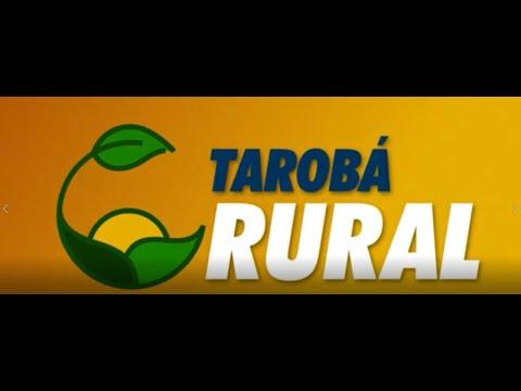Filipe Küster fala sobre a nova MP do agro no programa Tarobá Rural
