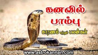 KANAVIL NAGAM - கனவில் பாம்பு  - விளக்கம் by ASTRO KANNAN -  PARAMPARAI JODHIDAR