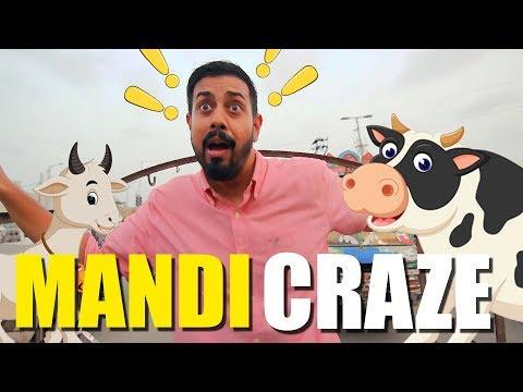 Mandi Craze | Bakra Eid | Bekaar Films thumbnail