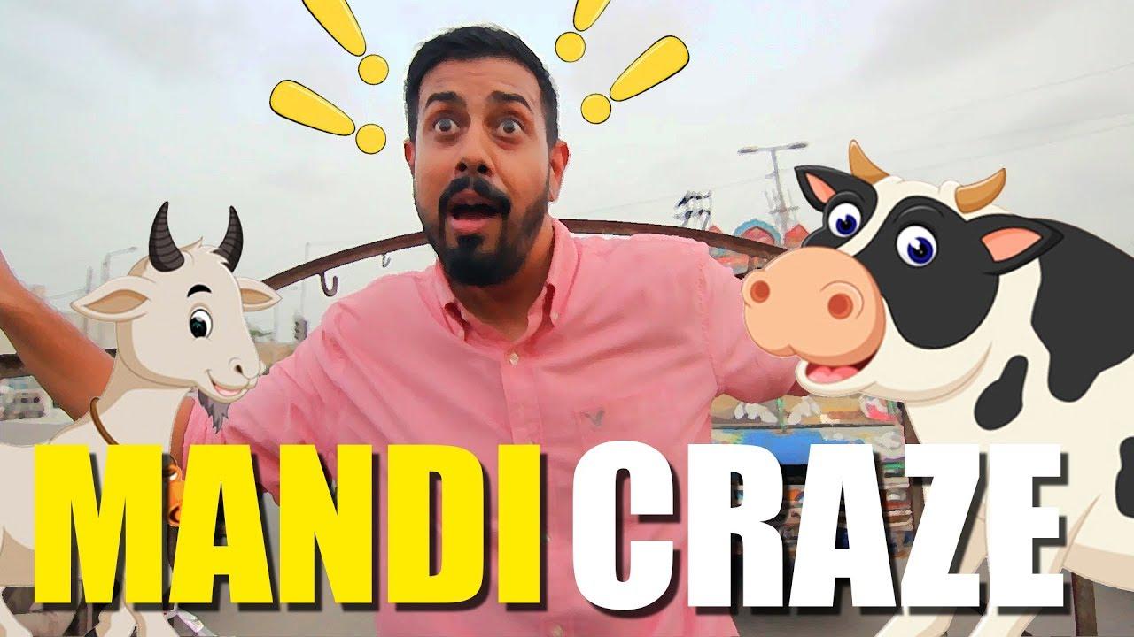 Mandi Craze   Bakra Eid   Bekaar Films