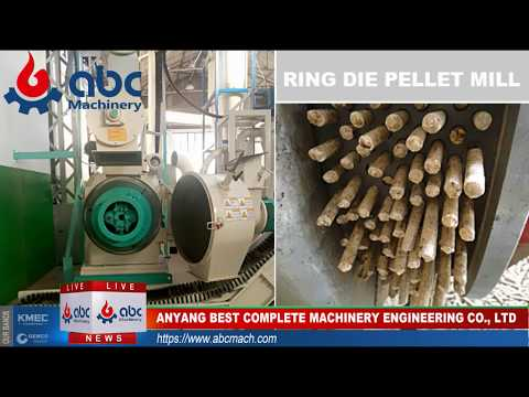 How are the wood pellet made  (Wood pellet plant, wood pellet mill)