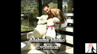 Maluma Music Evolution