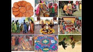 సంక్రాంతి అంటే ఏమిటి (Why We Celebrate Sankranti)
