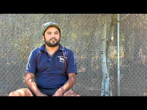Topanga Pet Resort on The Best of Southern California
