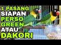 Dakori Perso Green Satu Pasang Usia Siapan Oscar Bf Batam  Mp3 - Mp4 Download