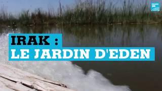 Irak : des marais comparés au Jardin d'Eden
