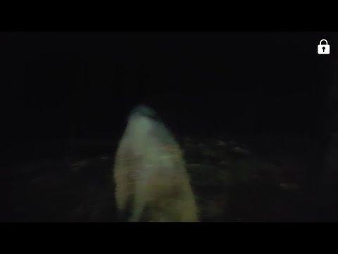 Ghost Hunting at Mission San Juan Capistrano, SA TX **Possible apparition!!**