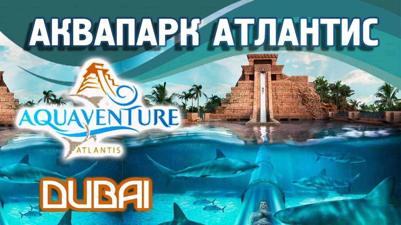дубай аквапарк атлантис видео