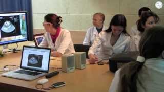 Дистанционное обучение студентов 5 курса на кафедре госпитальной хирургии в РНЦХ РАМН.