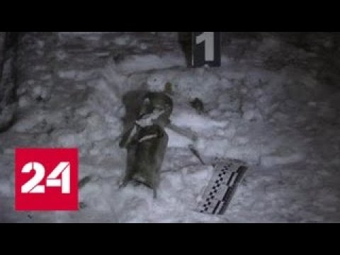 Власти ЛНР расследуют попытку диверсии - Россия 24