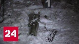 Смотреть видео Власти ЛНР расследуют попытку диверсии - Россия 24 онлайн