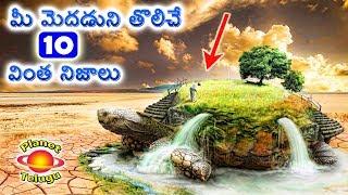 Mind Blowing New Unknown Facts in Telugu by Planet Telugu మీకు ఆశ్చర్యాన్ని గురిచేసే వింతలు