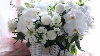 서초동꽃집강남성모병원장례식장근조꽃바구니배달