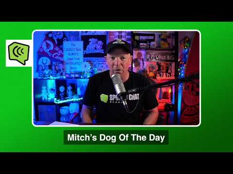 Mitch's Dog of the Day 1/16/21: Free College Basketball Pick CBB Picks, Predictions and Betting Tip