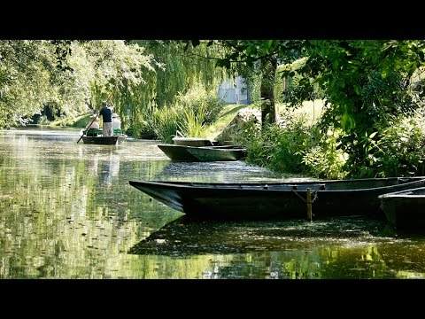 Grandeur Nature -  Le  Marais Poitevin - Film documentaire
