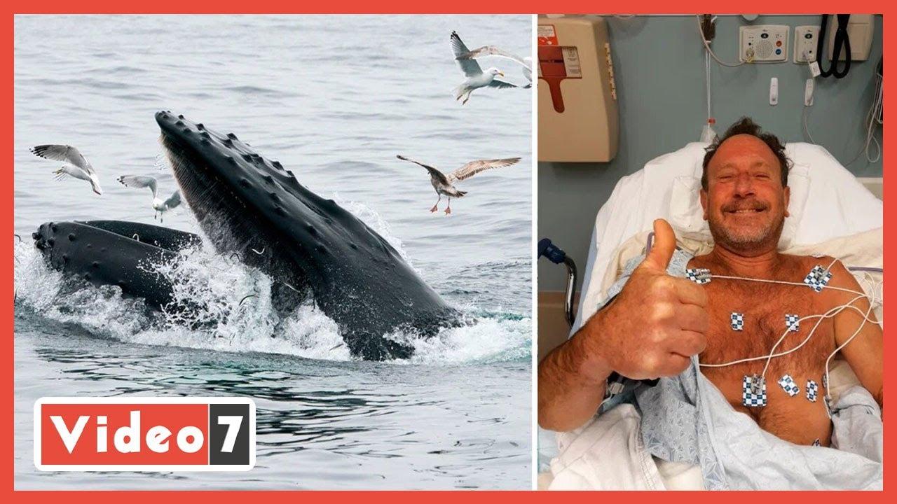صورة فيديو : مغامرة داخل بطن الحوت .. صياد يعيش 30 ثانية داخل بطن الحوت
