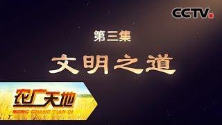 《农广天地》 20190724 乡村振兴 永联启示录 第三集 文明之道| CCTV农业