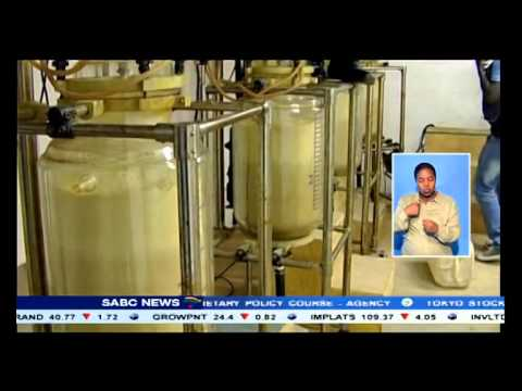 News the african digital