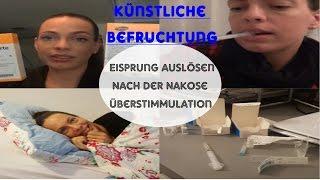 Kinderwunschupdate #5/Eisprung auslösen/Punktion der Eizellen/Überstimmulation