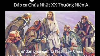 Đáp ca lễ Chúa nhật 20 Thường Niên A | Thánh Vinh 66 | Huy Hoàng