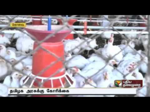 Demand to quell fears of bird flu in Tamilnadu