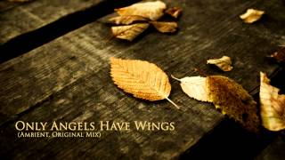 Deejay RT - Only Angels Have Wings (Ambient, Original Mix)