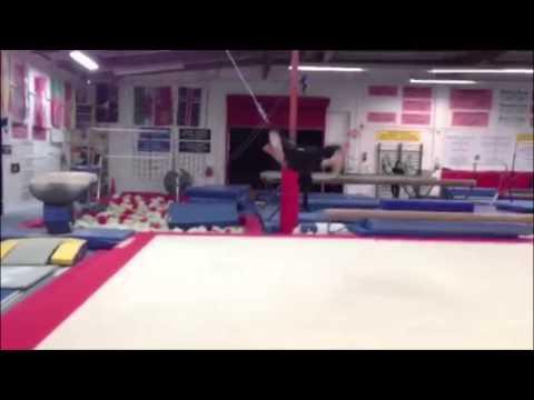 Lauren Mary Kim Trick Training Mini Reel