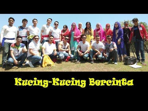 KUCING-KUCING BERCINTA (Soni-Soni Mohabbatein) Oleh MIONGERS (Pencinta Kucing) Makassar