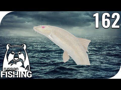 RUSSIAN FISHING 4 #163 - WEIßE ALBINOBARBE (LIVESTREAM AUSZUG)! 🎣 || PantoffelPlays