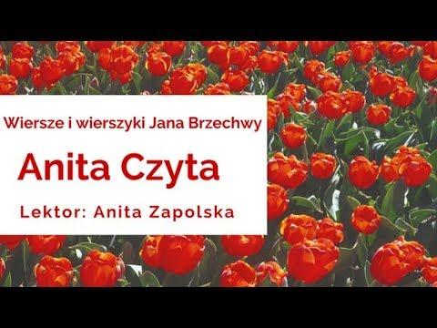 Wiersze I Wierszyki Jana Brzechwy Hipopotam Czyta Lektor Anita Zapolska Audiobook Pl