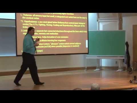 Biological Foundations of Behavior: Central Nervous System Part I