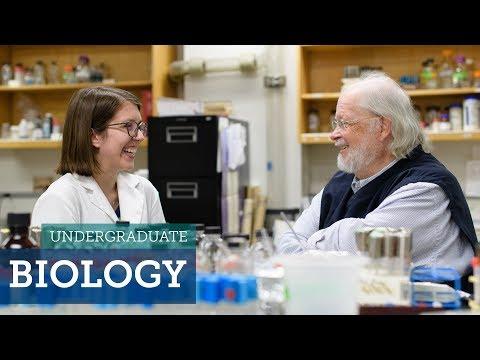 Major Decisions: Biology