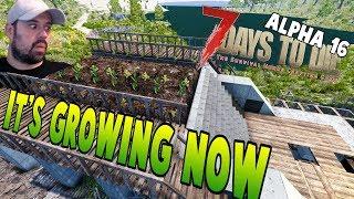 Building The Farm #2 | 7 Days To Alpha 16 Let