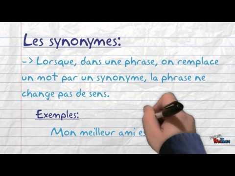 Les synonymes et les antonymes