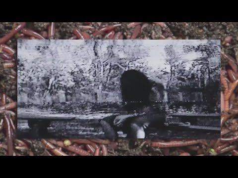 $uicideboy$ - THE WORLD IS F*CKING GREY PART I (New Songs/Hard Mix $B)