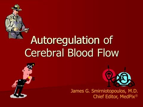 Brain Physiology - Autoregulation of Blood Flow