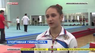 Итоги 2013 года по спортивной гимнастике