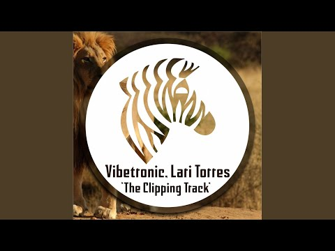 The Clipping Track (Original Mix)