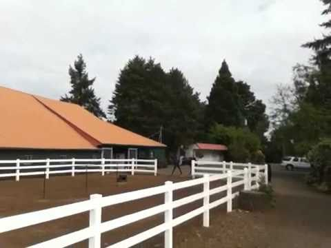 Wine tasting on horseback in Oregon's Pinot noir country
