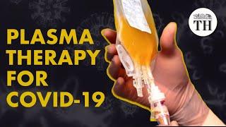 India To Explore Convalescent Plasma Therapy For COVID-19