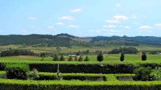 King Estate Winery - Eugene Oregon