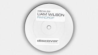 Liam Wilson - Raindrop