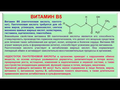 № 192. Органическая химия. Тема 28. Витамины. Часть 10. Витамин В5