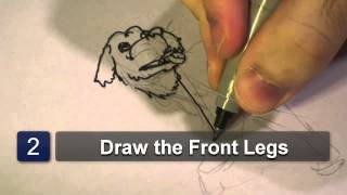 How to Draw Labrador Dogs