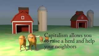 Two Cows explain capitalism over socialism