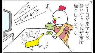 【エッセイ漫画】静かだった我が家にインコが飛び込んできた話