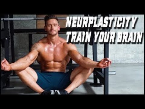 Neuroplasticity and Motivation - Brain Science with Dr. Salcido