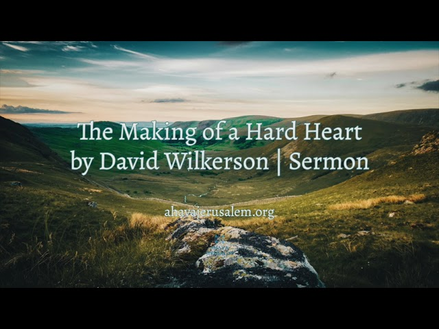 Discipleship Videos
